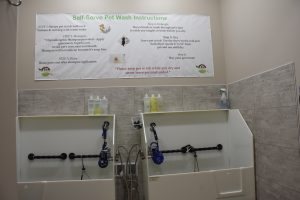 Ankeny self service pet wash at Wholesome Pet Essentials